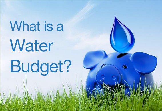 What is a Water Budget?